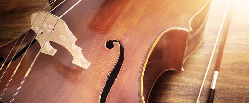 Violin Musical Instruments Insurance